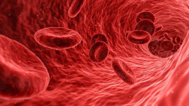 20 činjenica o krvi koje do sada niste znali