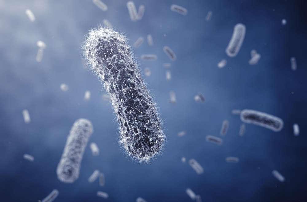Napravite najmoćniji prirodni antibiotik koji ubija sve bakterije!